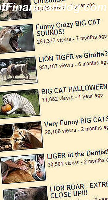 Pisipildid Big Cat Rescue'i YouTube'i kanali lehelt