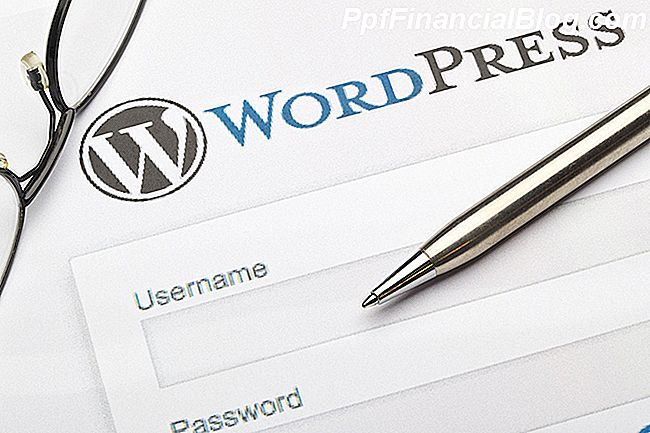 WordPress naudojimas E-Commerce